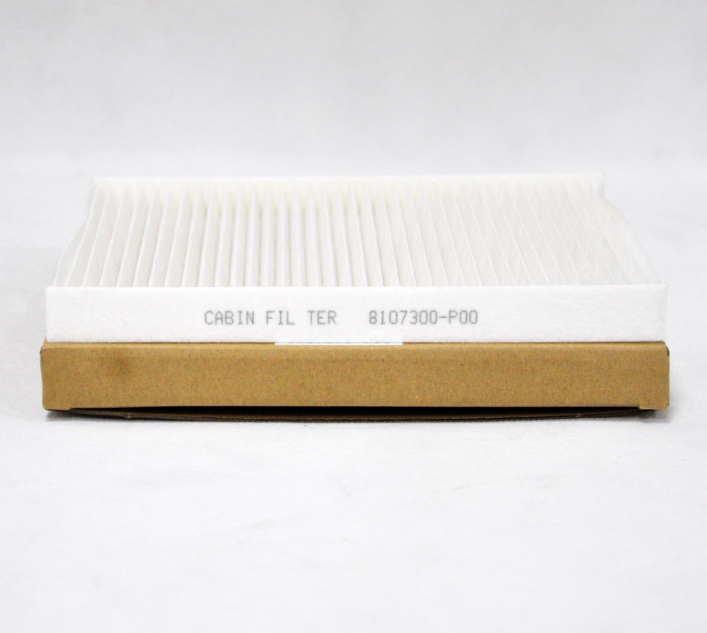 Truck Deel Airconditioner Filter Carbon Cabine Luchtfilter 8107300-P00/C30443
