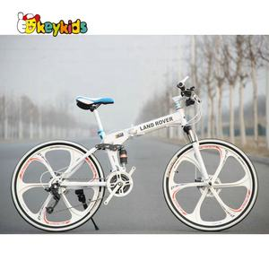 Mountain bicycle road bike aluminum folding bike for adult M17B001A
