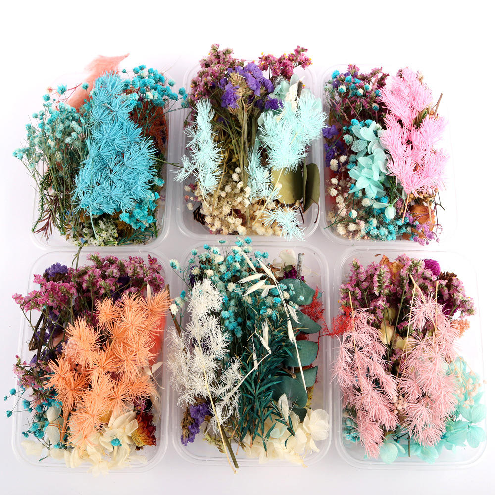 D050818 Dried Pressed Flowers and Leaves for Craft Resin Casting Floral Arrangement Jewelry DIY Greeting Cards