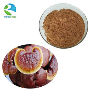 pure natural organic reishi ganoderma lucidum powder extract