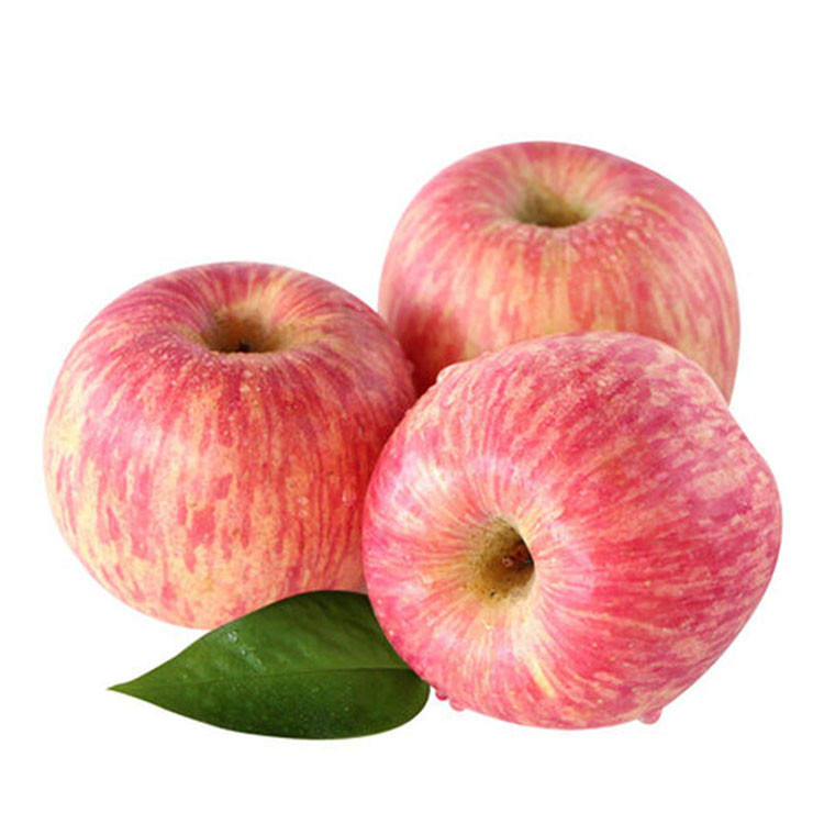 Shaanxi Late Ripe Crispy Red Fuji Apple