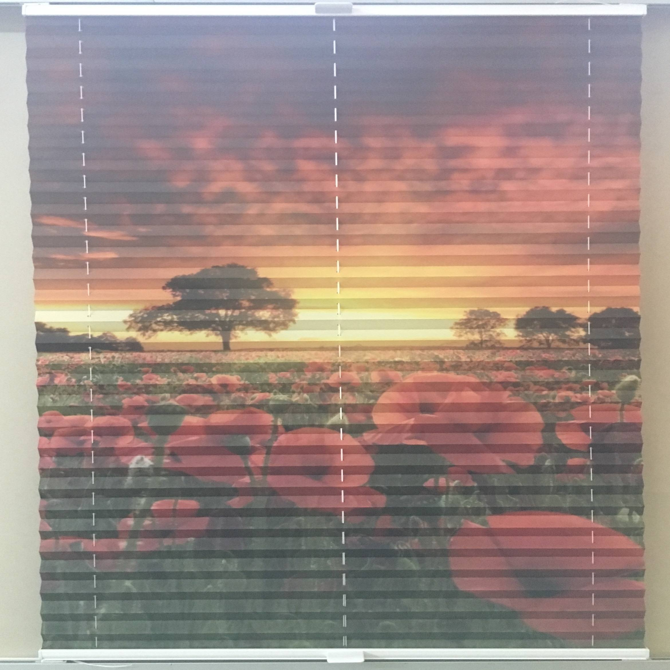 printed pleated blind