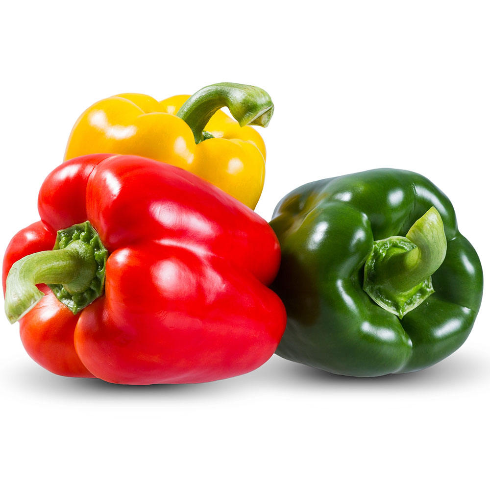 G&N F1 Hybrid Sweet Pepper Seed Chilli Pepper Red Green Bell Pepper Seeds Vegetable Plant Seed