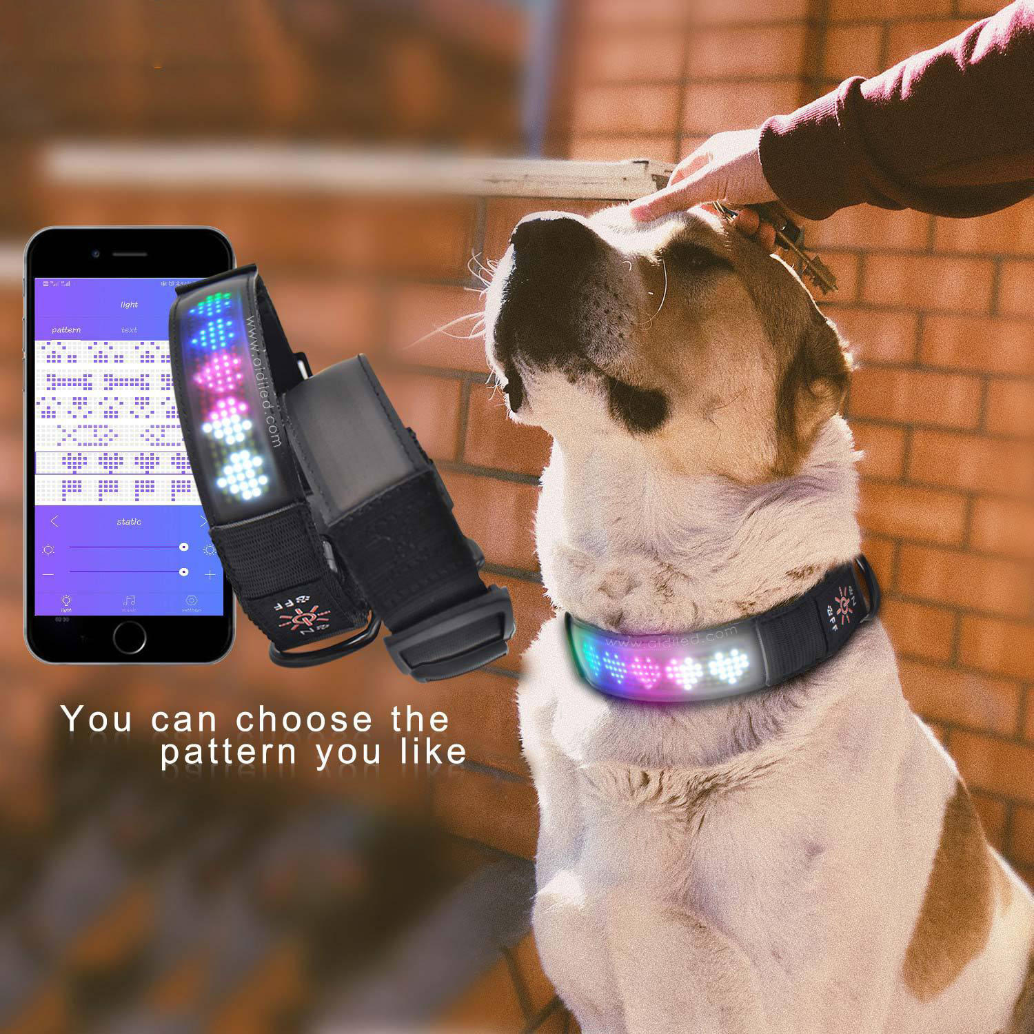 USB Rechargeable Bluetooth Dog Collar APP Control Led Collar Dog Collar Wifi APP Smart Phone Controlled Screen Scrolling Message