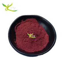 Natural Pure Acai Berry Juice Extract Powder