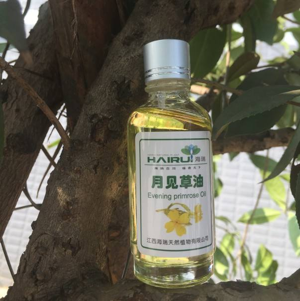 100% natural flower extract pure aganic evening primrose essential oil egypt