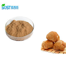 High Quality Organic Lions Mane Hericium Erinaceus Extract Powder