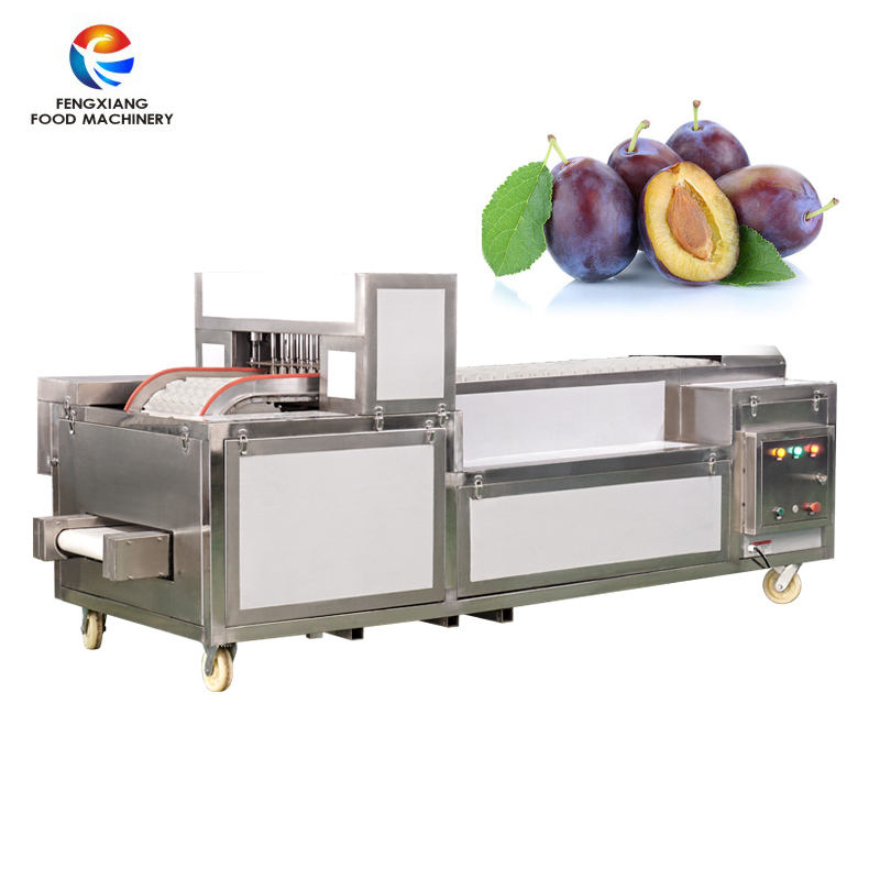 Orchard Automatic Fruit Core Remover Pitter Stanly Plum Prune Apricot Pitting and Cutting Machine