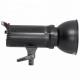 300 W Photo Studio Strobe Flash Modeling Light For Photography