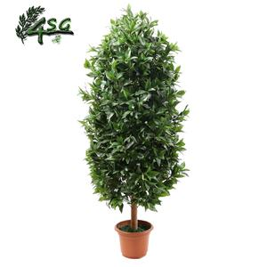 Gran BONSAI BAY árboles para venta 6FT casa decoración ARTIFICIAL árbol de LAUREL