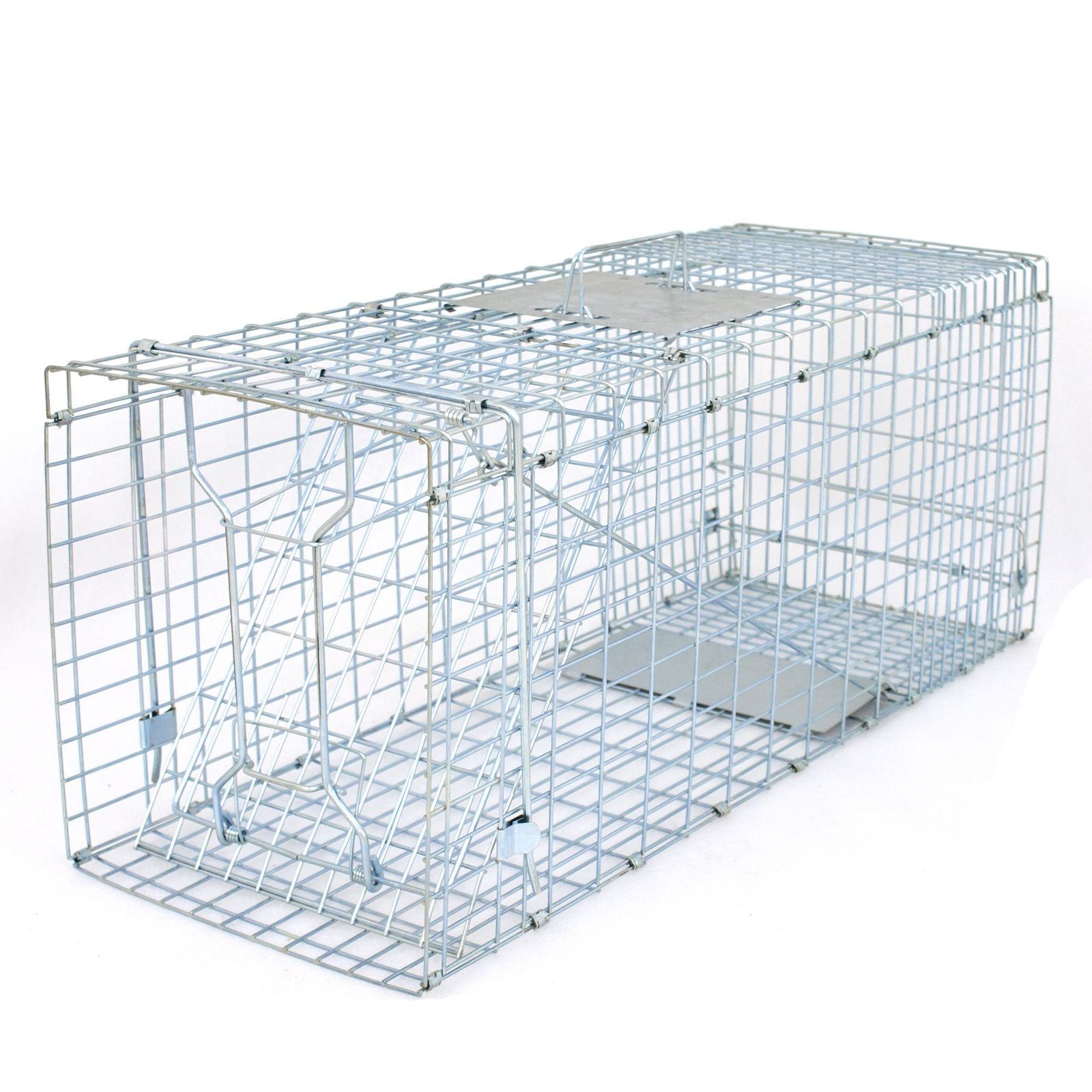 Folded Humane Live Animal Cage Trap for Rats,Cats,Rabbits,Raccoons,Martens,Foxes,Pig,Wild Boars,Birds,Pigeons Manufacturer