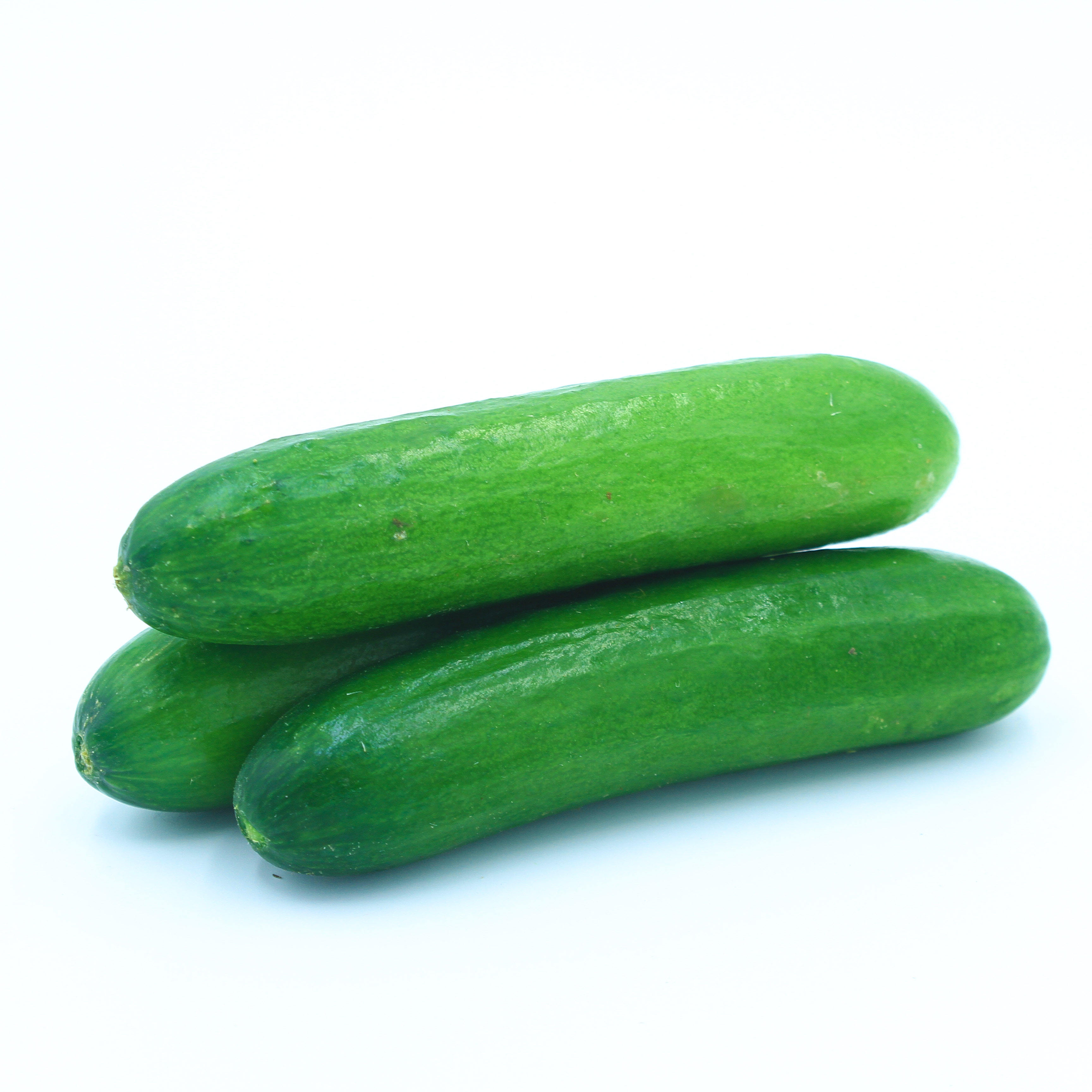 Fresh Cucumber for sale