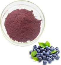 High Quality Healthy Product Acai Berry Powder