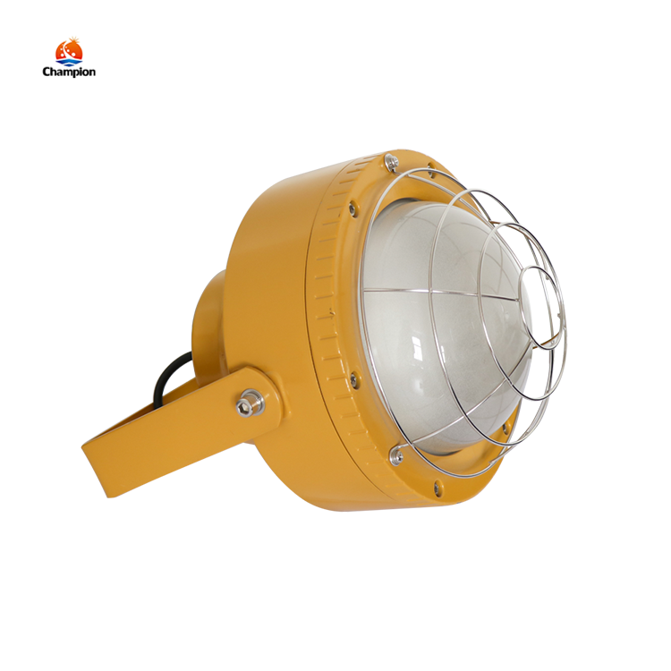 Good Quality High Brightness IP65 50W 80W Outdoor LED Explosion Proof Working lamp