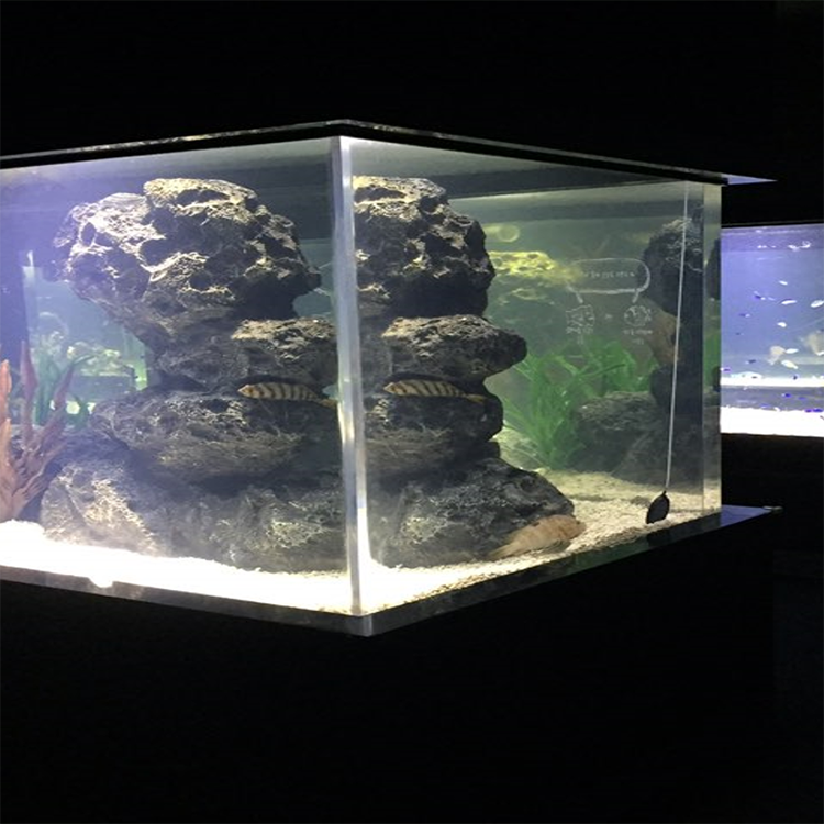 China Leveranciers Big Size Aquarium, Hot Koop Producten Marine Aquarium *