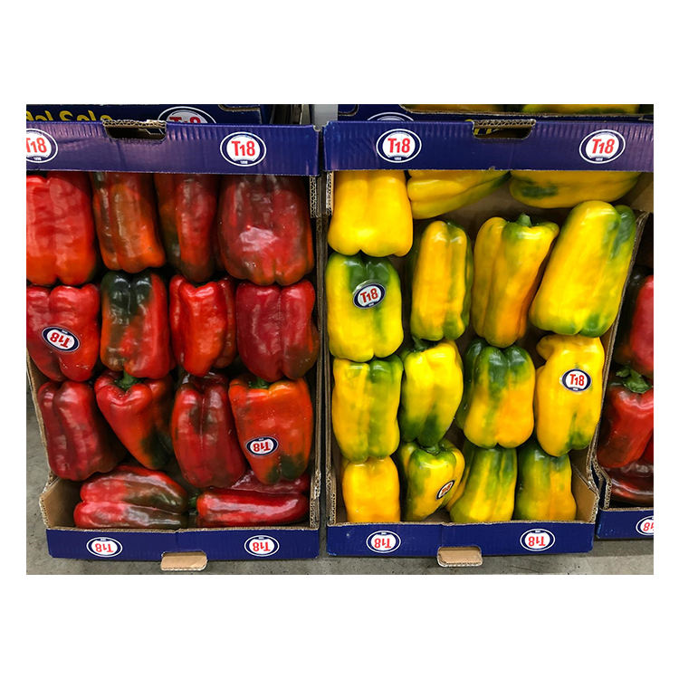 Italy Sicilian Fresh Chilli Peppers Yellow and Red Bell Pepper