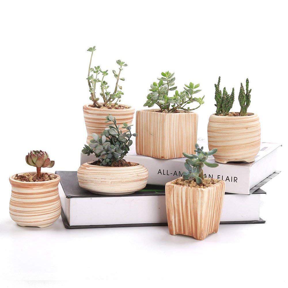 Wooden Pattern Succulent Plant Pot Cactus Plant Pot Flower Pot Container Planter Gift