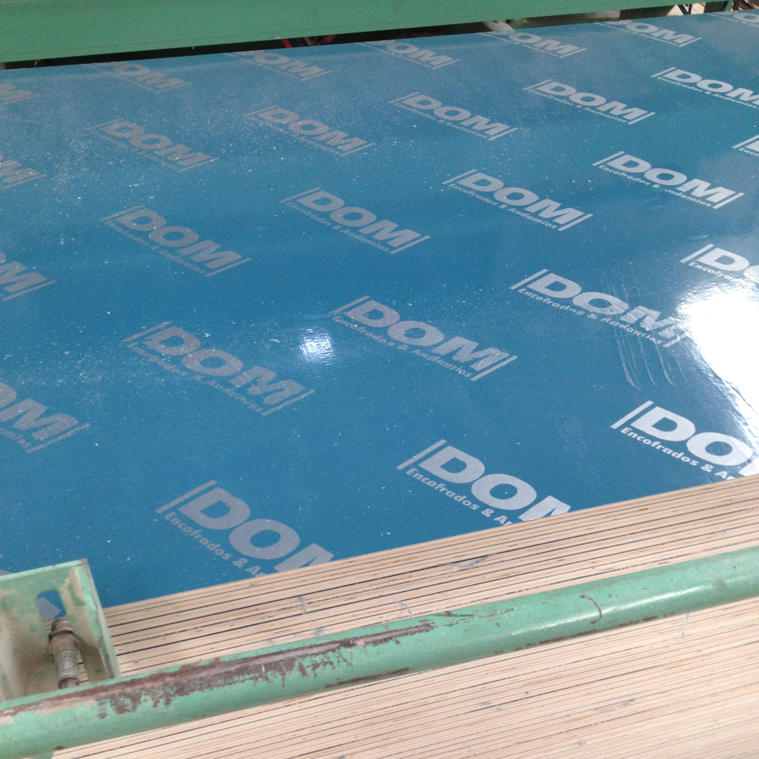 DOM PP faced plastic formwork plywood for formwork system