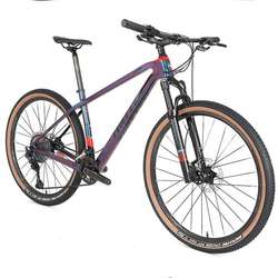 Twitter 2020 New arrival carbon mountain bike 29''/27.5'' holographic color mtb bike with XT/M8100 24 Speed groupsets bicycle