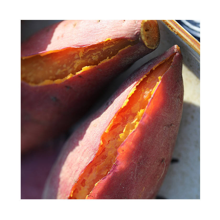 Small and medium-sized sweet potatoes carefully cultivated varieties of cheap sweet potatoes