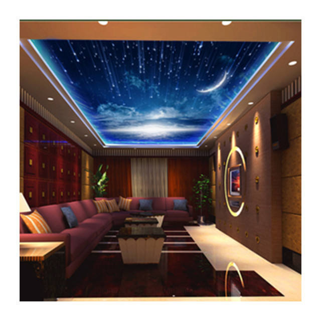 3d printed pvc stretch ceiling film / pop pvc stretch ceiling designs / 3d customized stretch ceiling