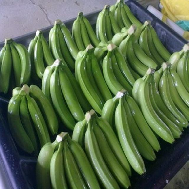 Fresh Banana Style And Tropical & Sub-tropical cavendish/ Banana bunches/ Thailand fresh banana