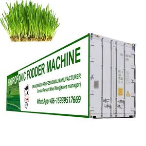 factory price professional automatic 1000kg/day green barley grass hydroponic fodder machine/hydroponic fodder container