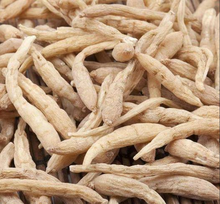 Natural Herb Tai Zi Shen Dried Pseudostellaria Root for Sale