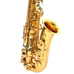 Gold Lacquer Brass AE-802 Alto Instrument Accessories Professional Eb China Sax Saxophone Alto
