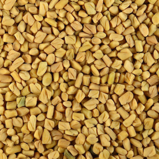 Fenugreek (Methi) Seeds