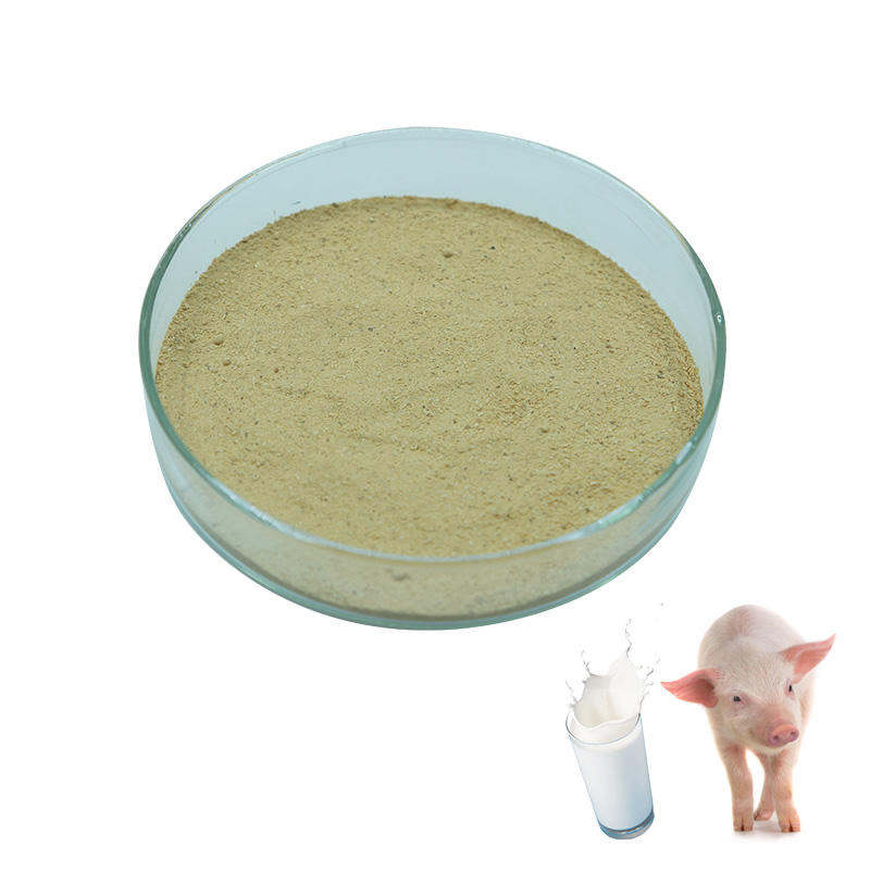 Hot sale pig grower feed strong milk flavor