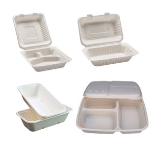 Bagasse Biodegradable Disposable Takeway Food Container