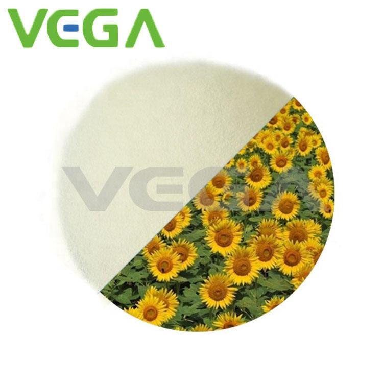 ベガ新製品ビタミン d/ビタミン d3/最新の製品市場でビタミン d