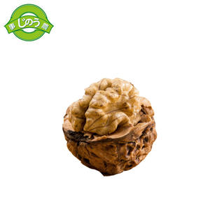 Chinese high quality whole walnut kernel organic Without Shell