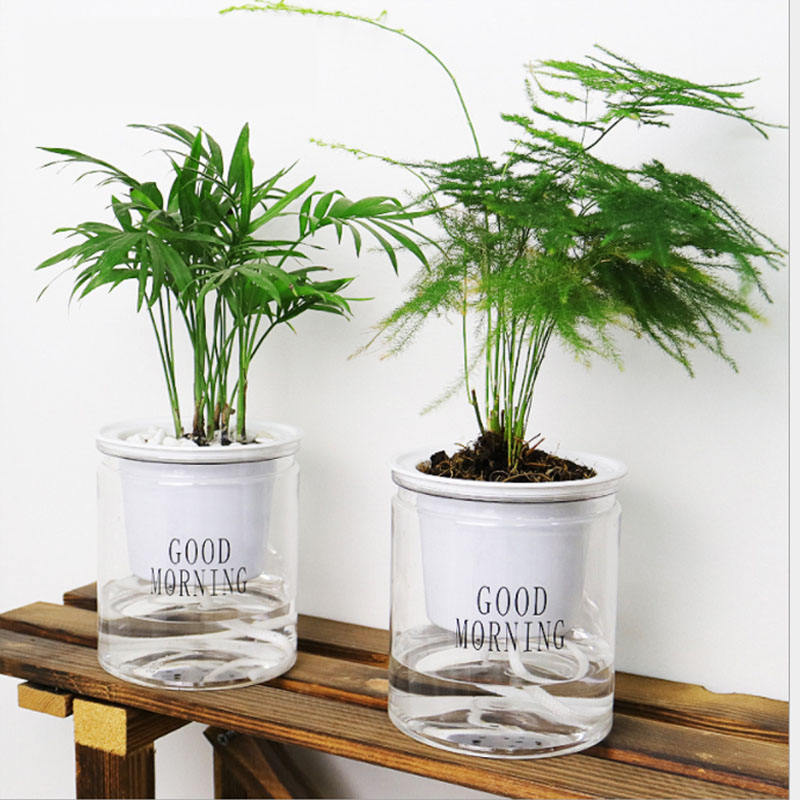 For Sale Indoor Office Round Hydroponic Transparent Clear Succulents Planter Self Watering Plastic Flower Pots In Bulk