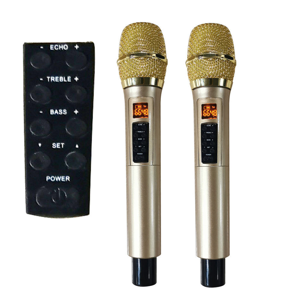 Factory supply uhf microphone with ECHO BASS TREBLE function echo Dual wireless mic