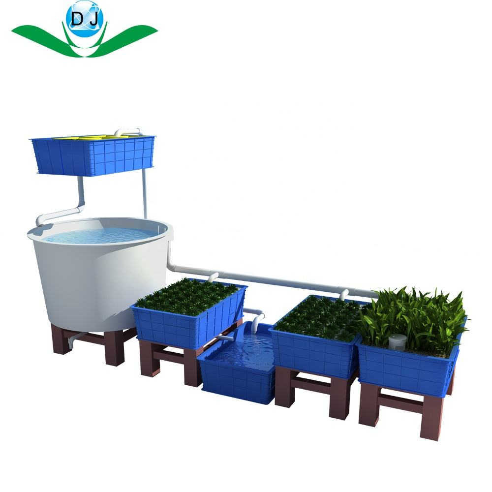 commercial Hydroponic Growing Systems Aquaponics Systems home aquaponics for lettuce