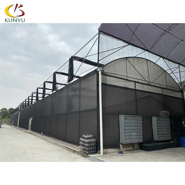 Single tunnel greenhouse plastic tunnel with galvanized steel (/polycarbonate)