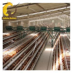 Jinmuren A type poultry farming 3 tiers cheap layer cage battery chicken price cages laying hens sell in algeria