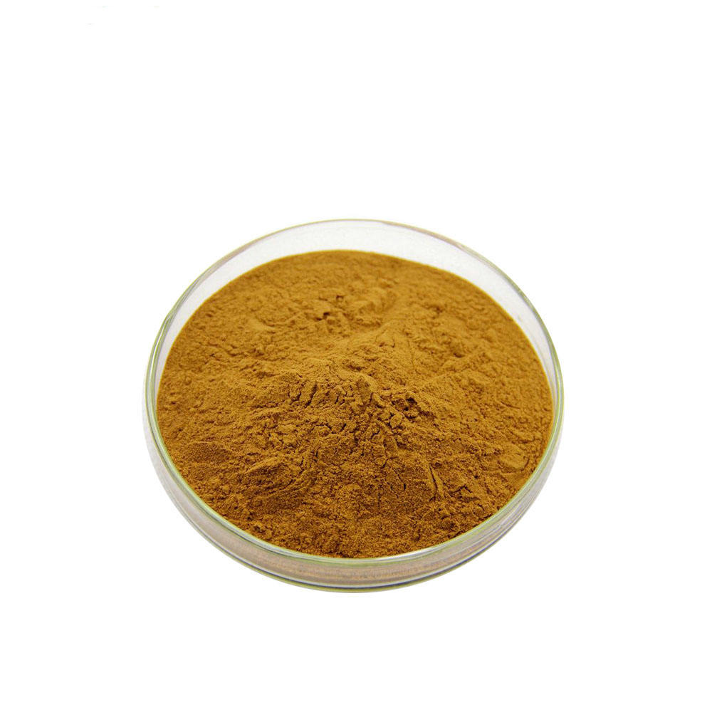 Top selling Cactus Extract 10:1 powder / Opuntia Ficus Indica L
