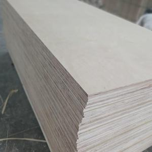 White Color Playwood 1220*2440 Packing Plywood competitive price Plywood For Sale