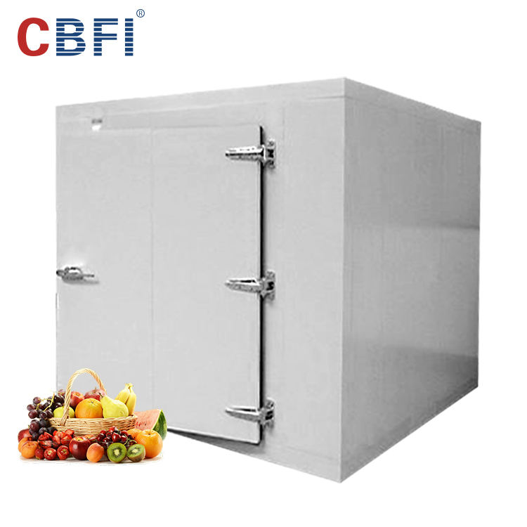 Cheap Price Multifunctional Function Mobile Design Meat Fruit Fish Storage Cold Room on Sale