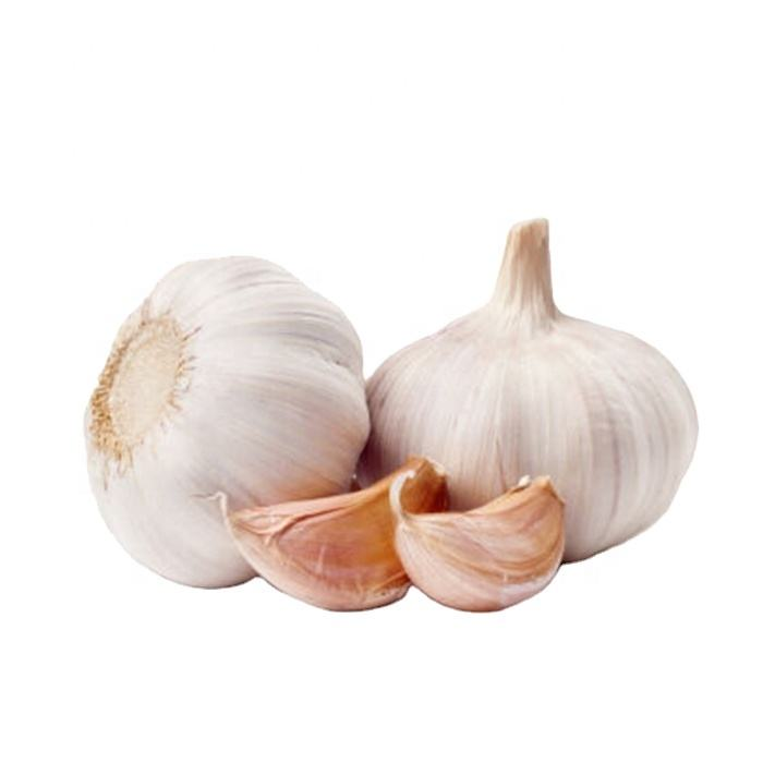 Garlic Chinese wholesale garlic 2020 Fresh New Crop Garlic in bulk for import/export in low price