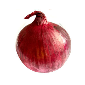 Around the world red onion with Fresh enough