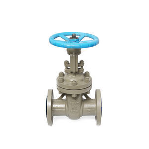 China Oem Manufacturer Stainless Steel Wcb Flanged Gate Valve