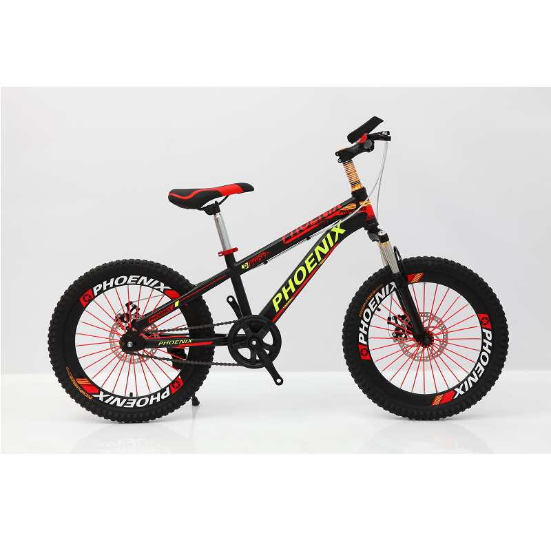Phoenix Bicycle For Children OEM ODM 20 Inch Vehcles Kids HOT SALE Bike