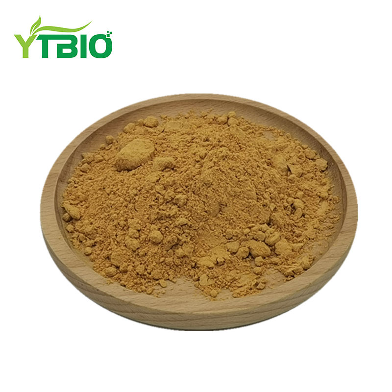 Yuantai Groß Pulver Damiana Leaf Extract 100:1
