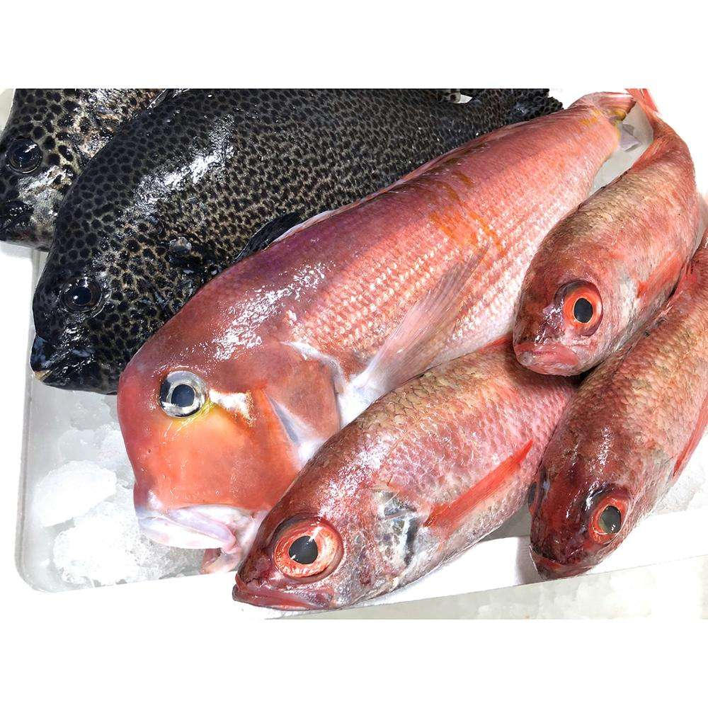Box packaging high-class cooking air fish live seafood and frozen food