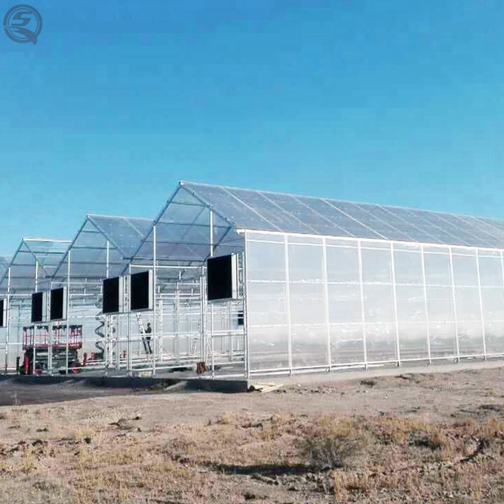 serre agricultural skeleton stable structure venlo type polycarbonate sheet greenhouse for flower cultivation