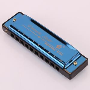 10 Holes Professional Harmonica For Sale